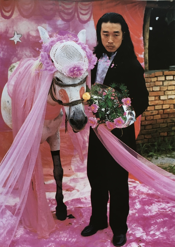 36c. Wang Jin. To marry a mule. 1996. Biennale de Venise 1999